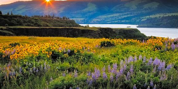 Oregon2